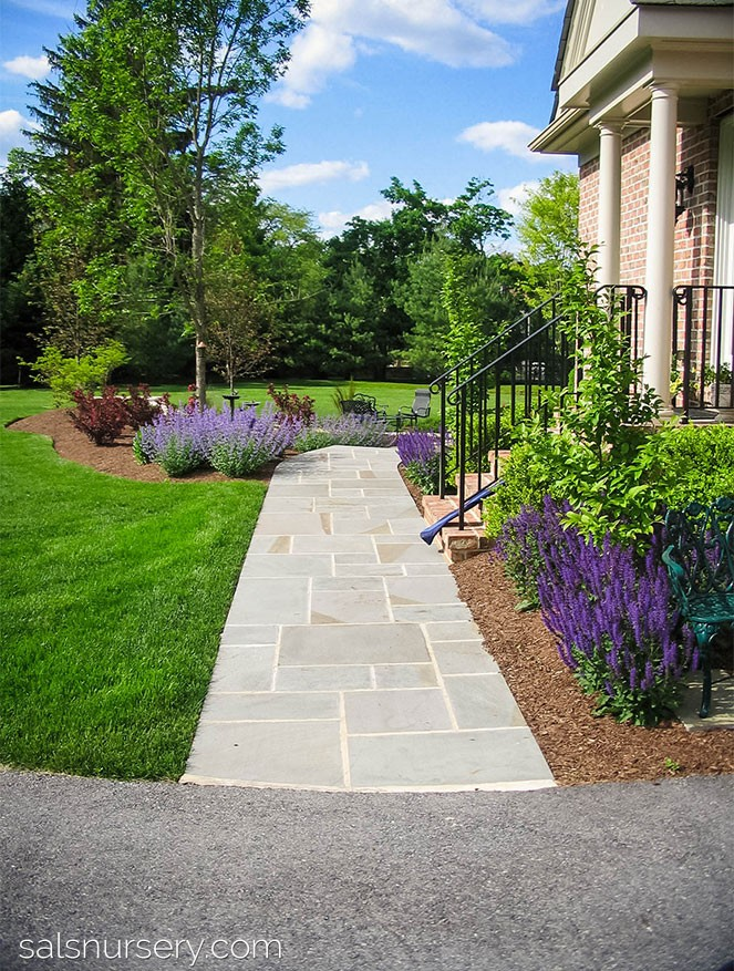 Straight Walkway in the front of a house