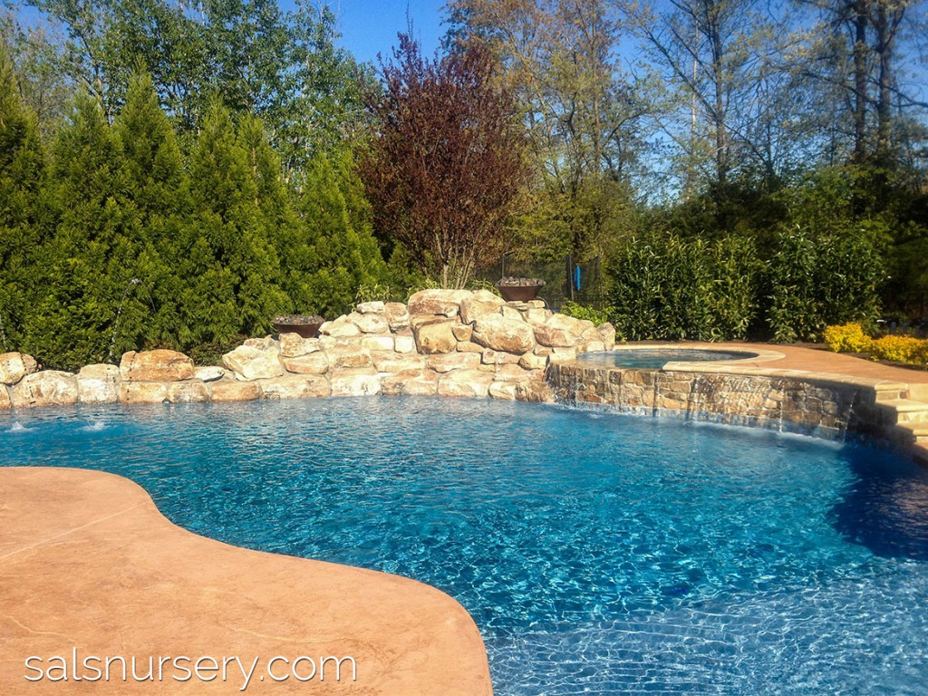 Large pool with boulders and built in spa