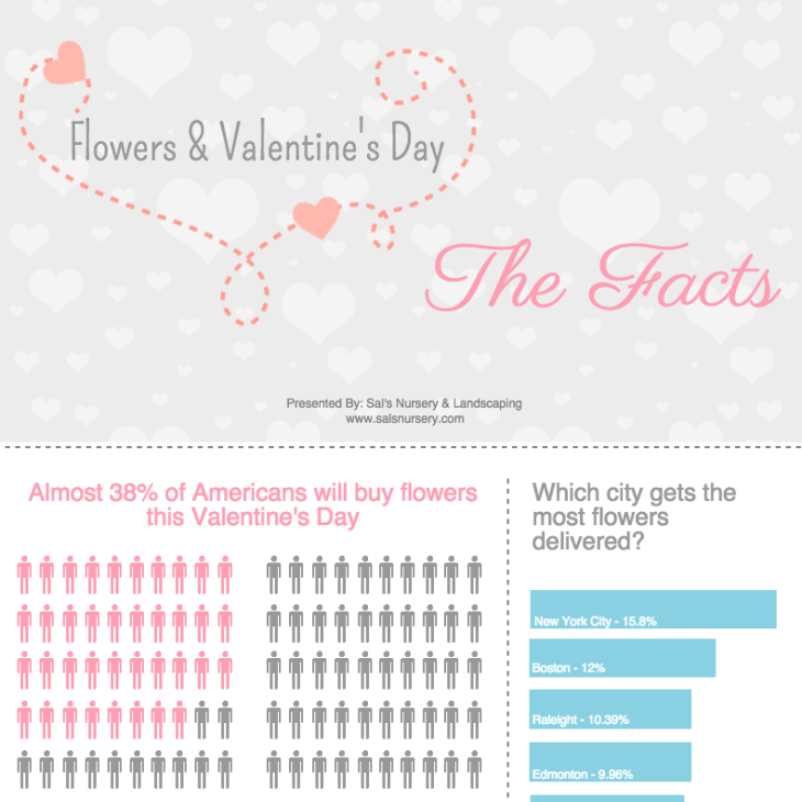 Valentine's Day Infographic about Flowers
