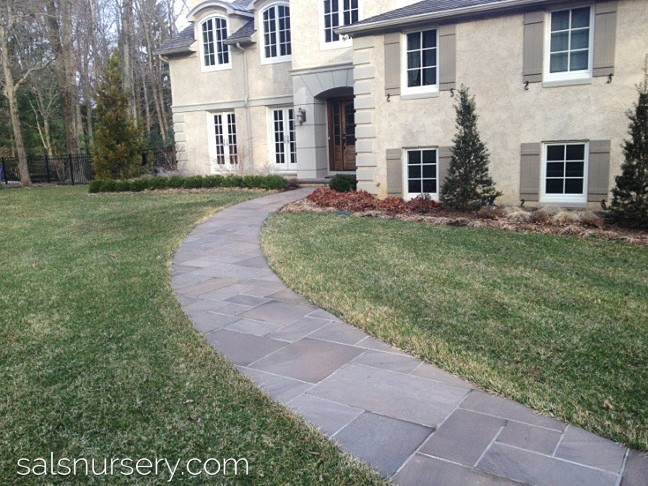Front of a house with walkway, grooming, and new landscaping