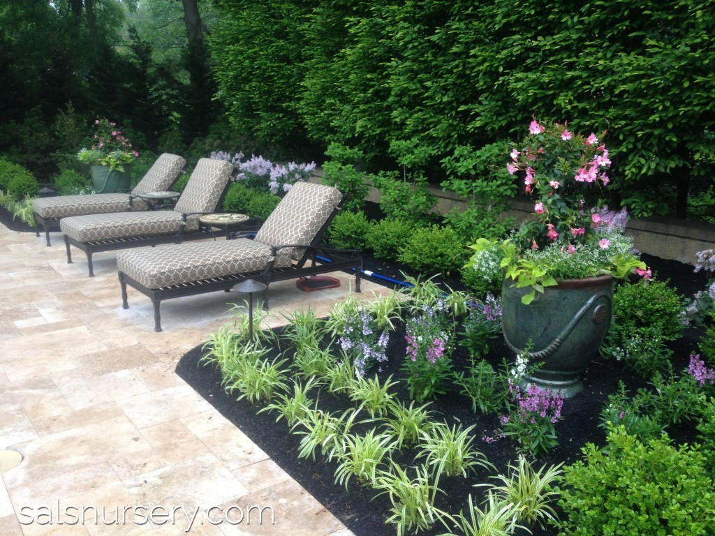 Landscaping Surrounding Lounge Chairs