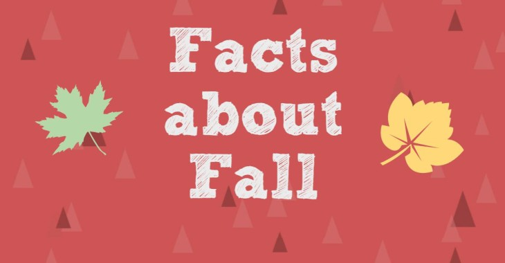 Fall Facts Post Feature Image