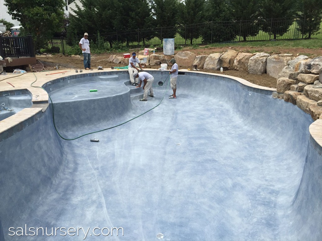 Pool with Vinyl Liner and Coping